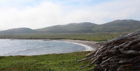 Coast of Bays