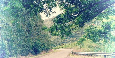 A switchback on the road to Hana